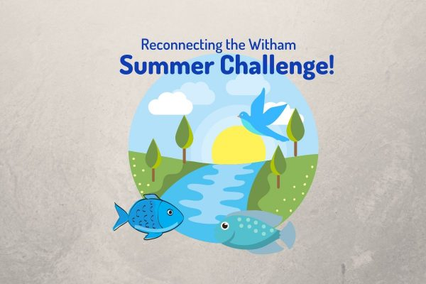 Our Summer Challenge is here!