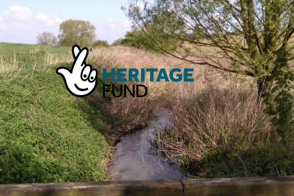 Lincolnshire Rivers Trust receives grant of £206,000 from the government's Green Recovery Challenge Fund